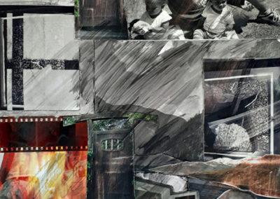 "Abby Wasserman, ""Endangered"", photographs, mixed media, 21 x 17, $75"