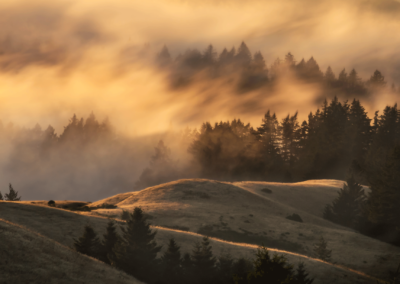 "Mary Sheft ""Fog Moves In"" Photograph on Baryta, 18x24 $350-"