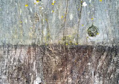 "Dan Krimm, ""Untitled"" Photograph 11x8.25 NFS"