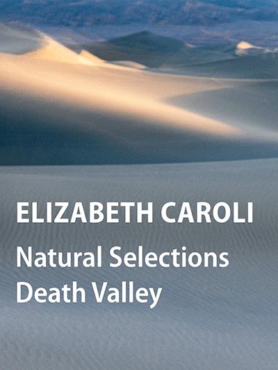 ELIZABETH CAROLI: Natural Selections Death Valley – O'Hanlon Online Loft Gallery Show