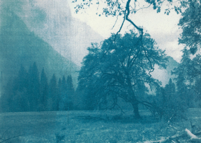"Christine Huhn ""Yosemite Valley, California. 2016"" Gum Bichromate, 12x12 $350"
