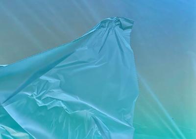 "George Tomberlin ""blue translucent"" iPhoto, 11x10 $225"